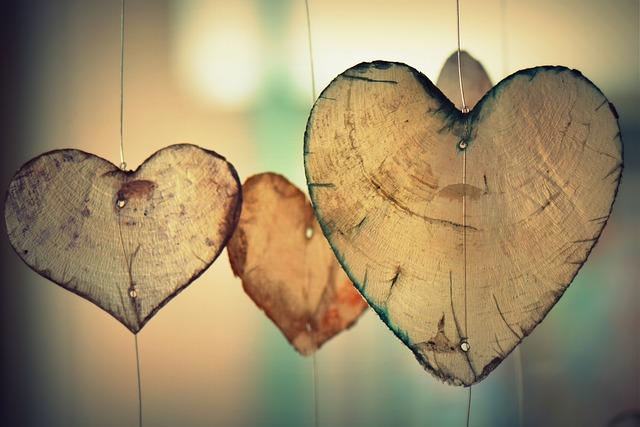 srdce ze dřeva.jpg