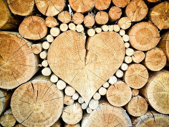 srdce z kmenů